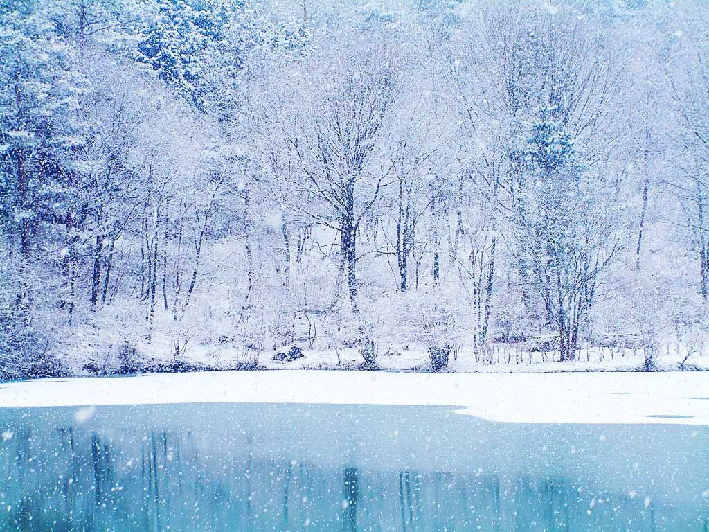 winter_wallpaper