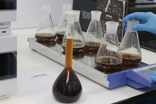 コーヒー実験
